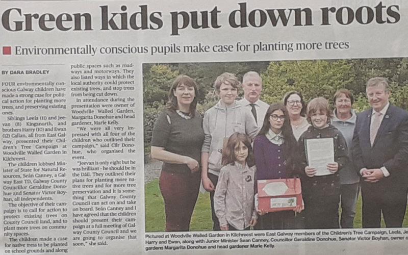 Children's Tree Campaign - Connacht Tribune