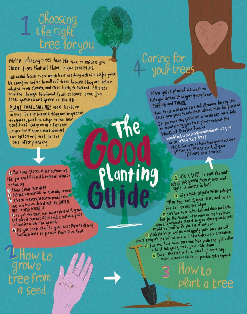 Children's Tree Campaign - Tree Planting Guide